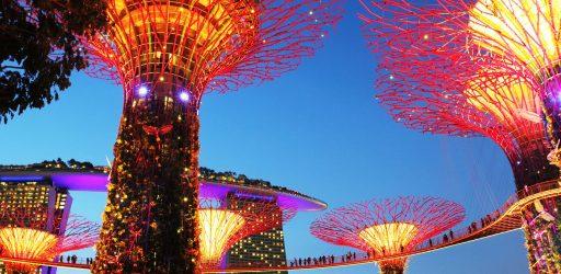 Сингапур Супердеревья