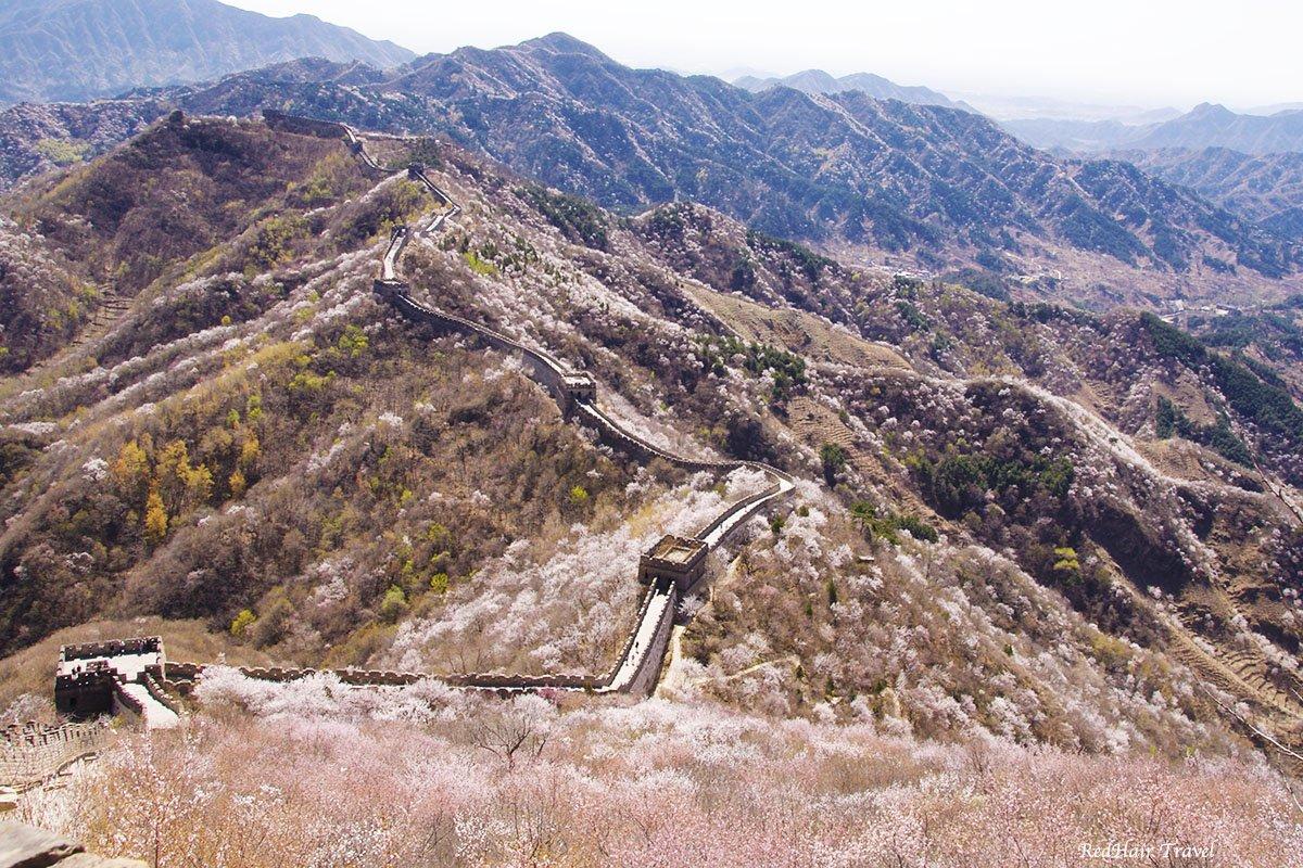Вид на Великую Китайскую Стену