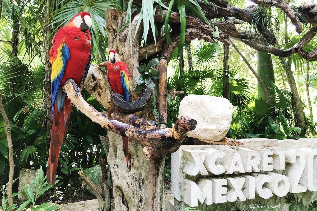 парк Шкарет, Мексика