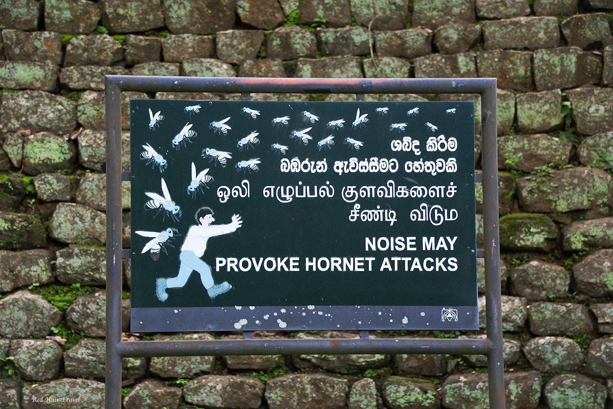 скала Сигирия, Шри Ланка