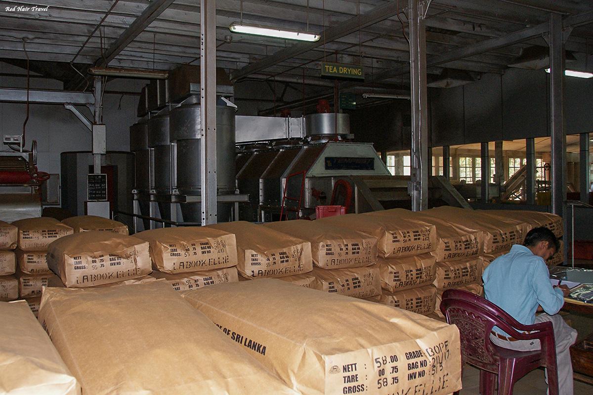 чайная фабрика, Нувара Элия, Шри Ланка