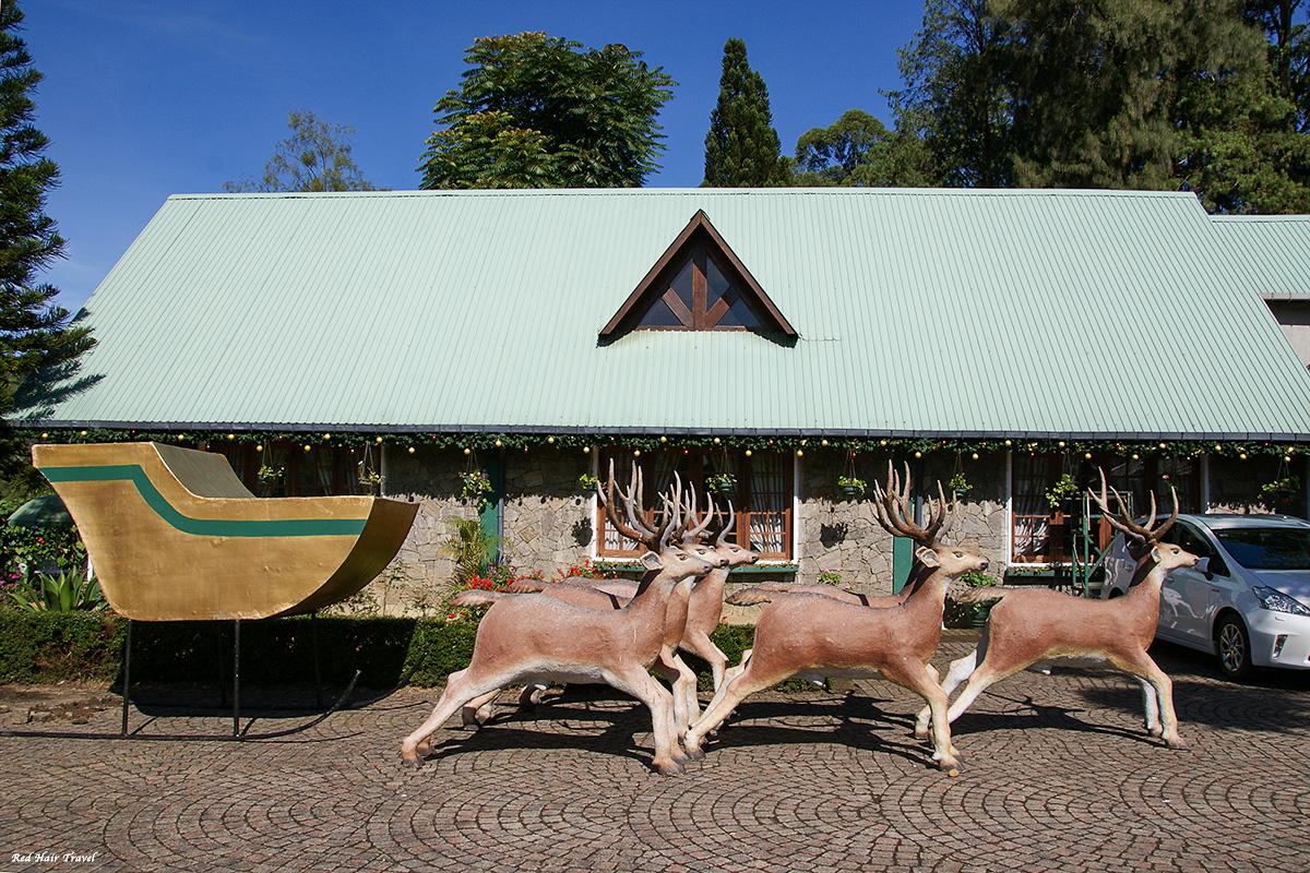 tea museum mackwood, nuwara eliya