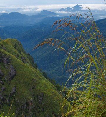 10 дней на Шри Ланке: маршрут с приключениями