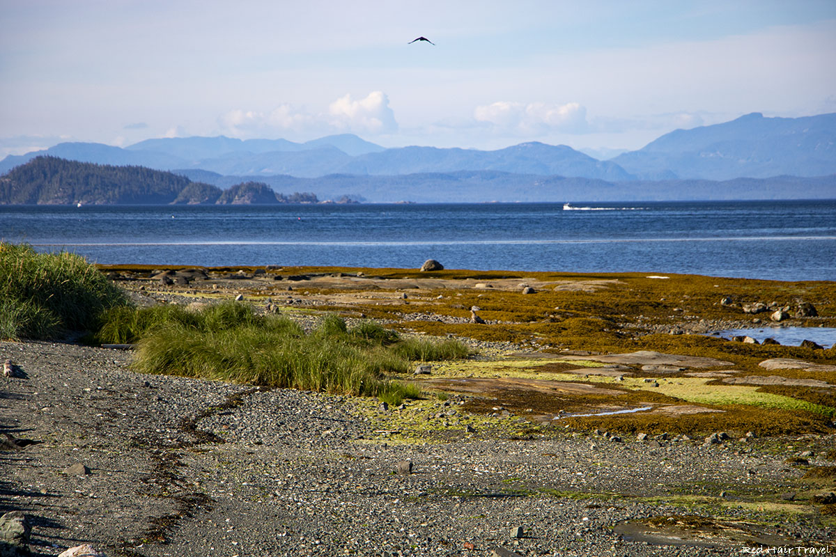 Port Hardy, North Vancouver Island