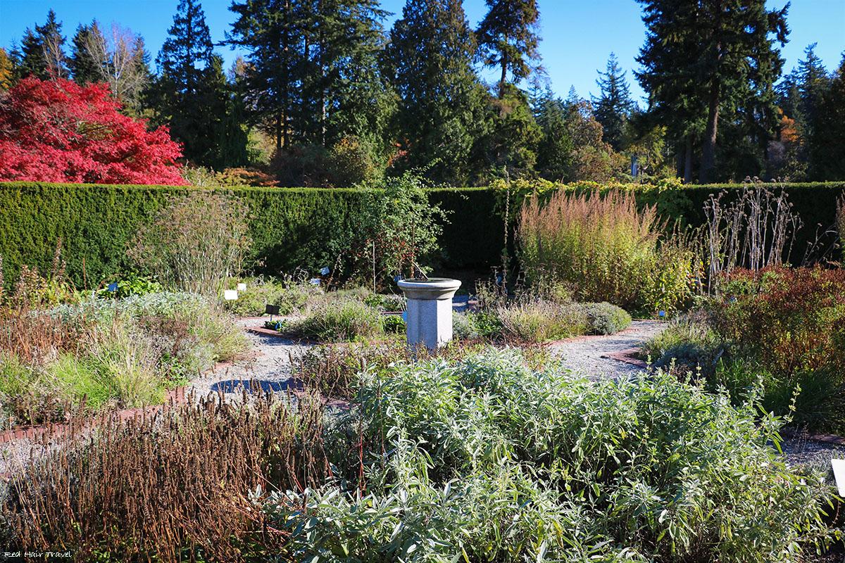 аптекарский огород, Ботанический сад UBC, Ванкувер