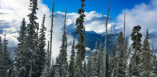 горнолыжные курорты Ванкувера