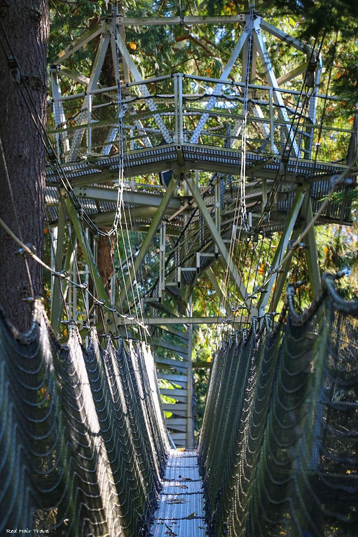Greeheart Treewalk, Ботанический сад UBC, Ванкувер